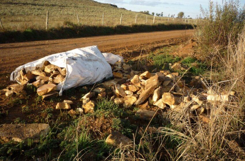 Lixo de toda espécie é jogado às margens de estrada