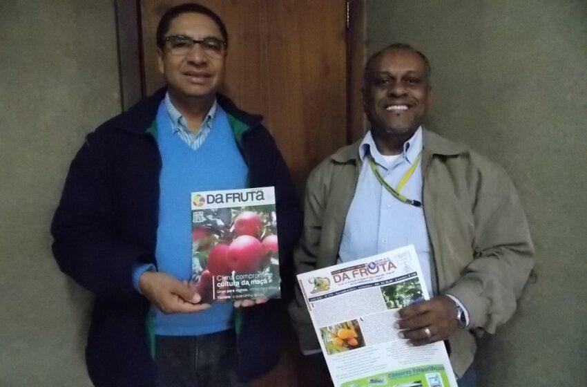 Será lançada no mês de maio a Revista da Fruta