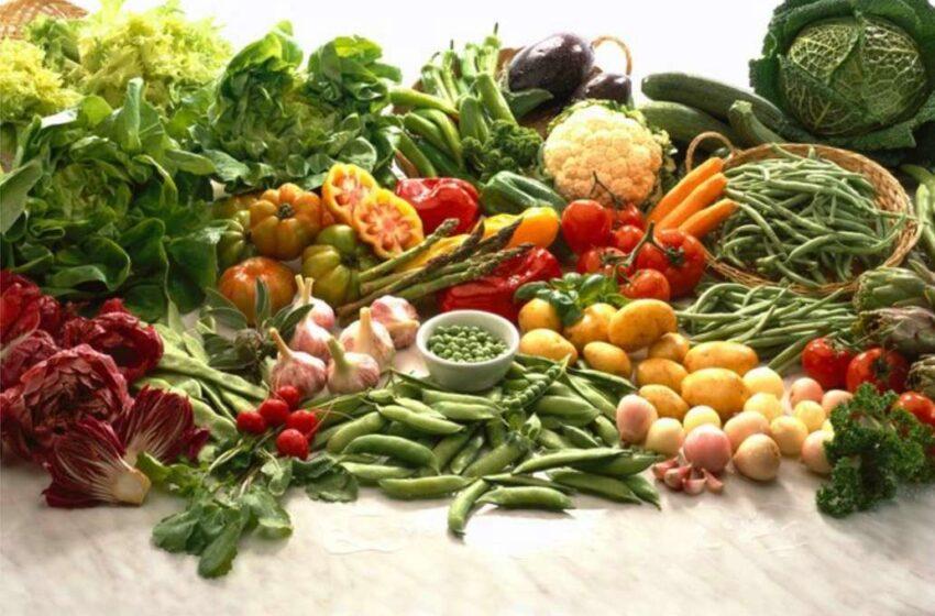 Crianças menores de 2 anos são mais abertas a provar legumes