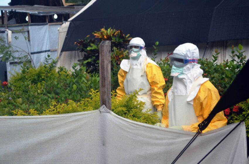 Continua a rápida transmissão do ebola na África, com 84 mortes em três dias