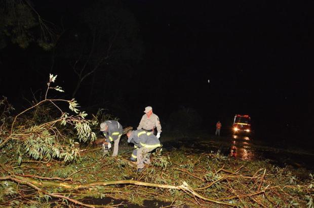 Temporal destrói telhados, derruba árvores e interrompe estradas na Região Central