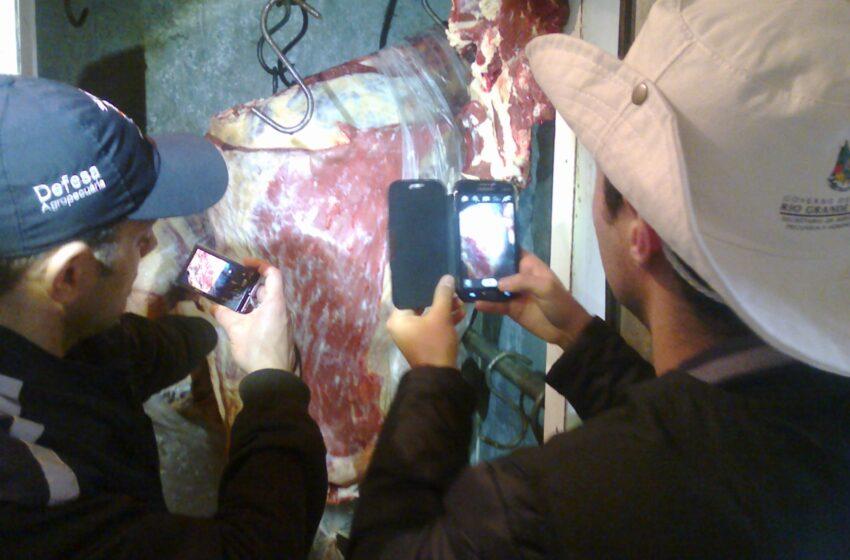 Órgãos de Segurança de Vacaria intensifica combate ao abigeato e carne clandestina