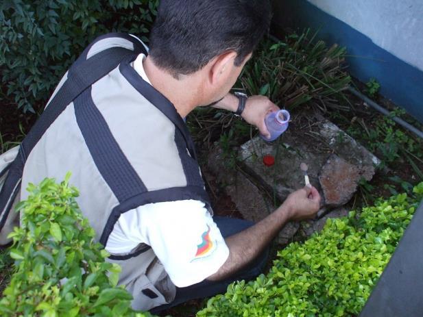 Santo Ângelo registra mais 27 casos de dengue
