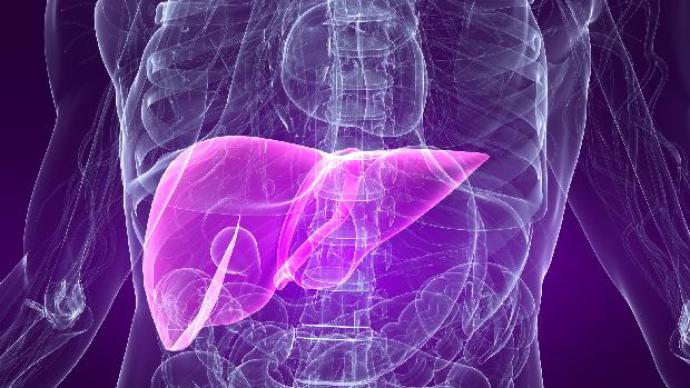 Stress aumenta risco de morte por doença no fígado