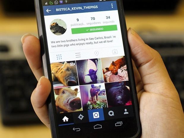 Usuários do Instagram reclamam de instabilidade na versão web do app