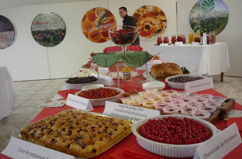 Feira de Pequenas Frutas, Artesanato e Mel de Vacaria e Feira de Frutas Nativas do RS acontece neste final de semana