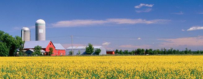 Entidades sugerem exclusão de PPCI em propriedades rurais