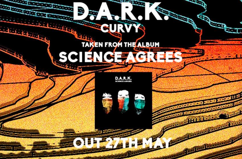 Membros de The Smiths e The Cranberries formam banda D.A.R.K