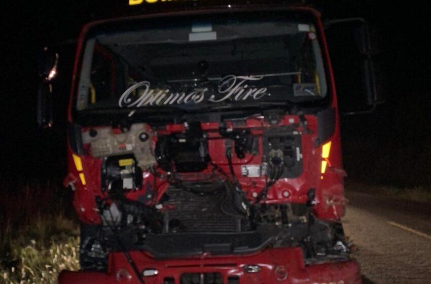 Caminhão dos bombeiros atropela búfalos na BR 285