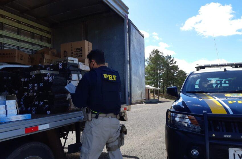 PRF prende criminoso transportando mais de meia tonelada de maconha escondida em carga de cigarros contrabandeados