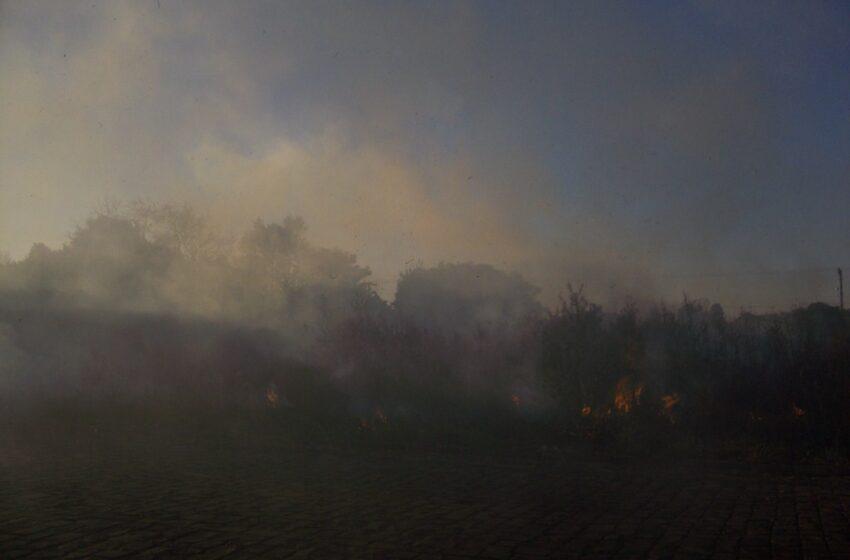 Encontro em Bom Jesus trata sobre queima controlada de campo nativo