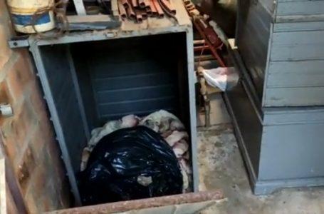 Polícia Civil encontra cadáver em residência no Bairro Pradense