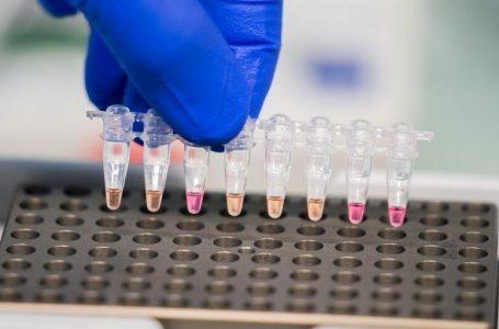 Vacina anticovid da Novavax tem mais de 90% de eficácia, inclusive contra variantes, diz estudo