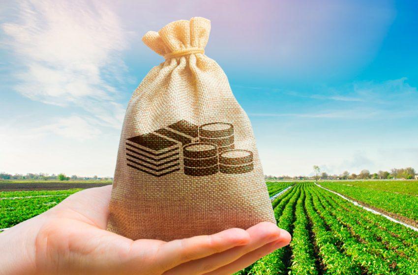 Banrisul anuncia Plano Safra 2021/2022 com R$ 5,2 bilhões: o maior da história do banco